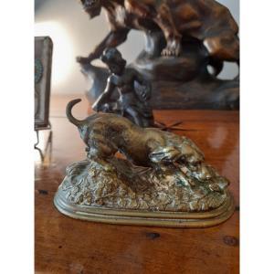 Bronze Animalier  Signé Jules Moignez