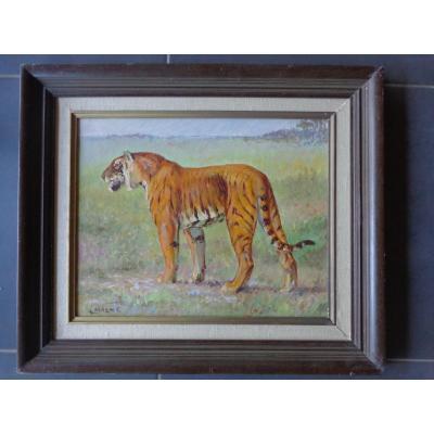 Huile De A Magne 1883/1968  Tigre
