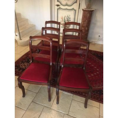 Suite Of 6 Dining Chairs In Mahogany