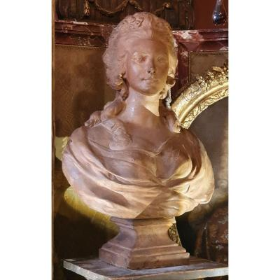 Cooked Bust In Louis XVI Period