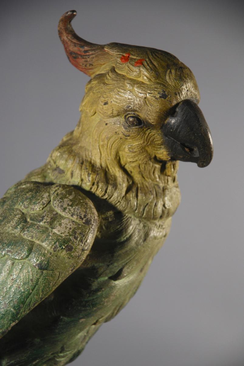 Perroquet Polychrome En Régule Et Bronze fin 19ème siècle