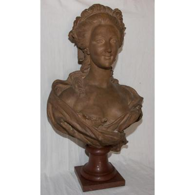 Bust Of Terracotta Marie Antoinette B Feinberg End Of The XIXth