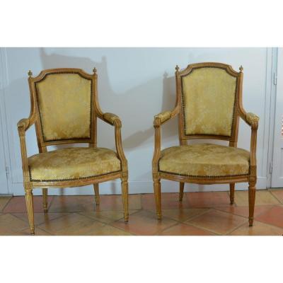 Pair Of Parisian Armchairs Old Louis XVI At Plumets Soie Furniture