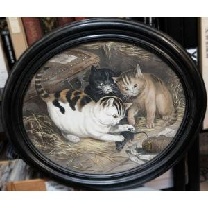 Chatons jouant, paire de chromos N III