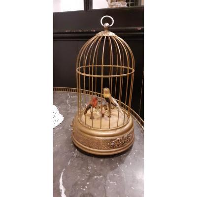 Automate Cage à Oiseaux siffleurs