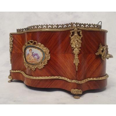 Planter Napoleon III Period - Sèvres Porcelain - Rosewood & Bronze - 19th