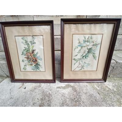 Aquarelles De Fleurs Formant Paire époque Art Nouveau