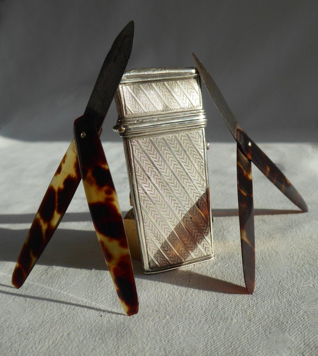 Nécessaire à Manicure En Argent Massif & écaille De Tortue , Flammes De Vétérinaire  XIXe écrin