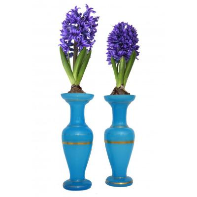 Paire De Vases à Jacinthe , Opaline Bleue , XIXe , Louis Philippe , Dorure , Bulbe  Charles X