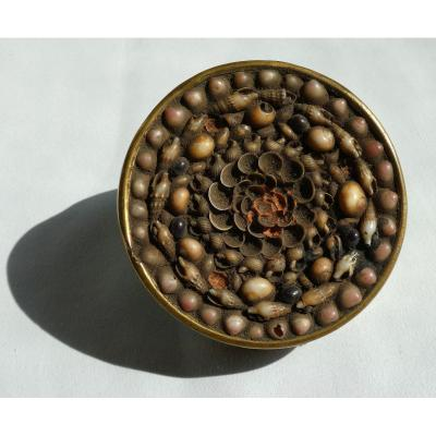 Nineteenth Praline / Confectionery Box Circa 1830 Sweets, Seaside Souvenir Mother Of Pearl Shell