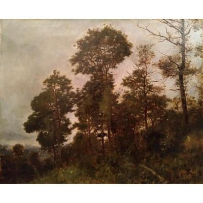 The Trees By Edouard Desommes (1845-1908)