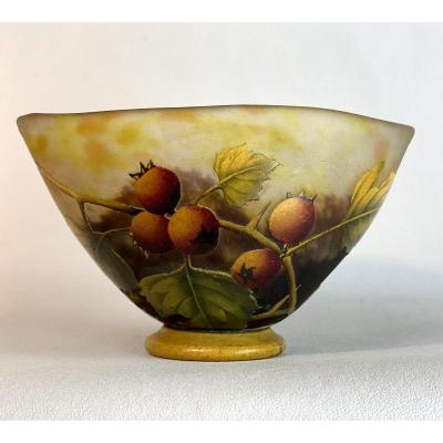 Daum Nancy / Cup On Piedouche A Gooseberry Decor On Marmoreen Background