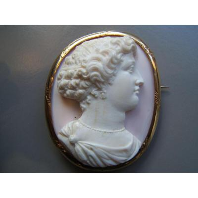 Gold Brooch, Cameo Coral Niii Time