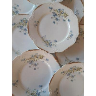 Beautiful Suite Of 12 Porcelain Plates From Pillivuyt On Board Scalloped Gold Nineteenth Century