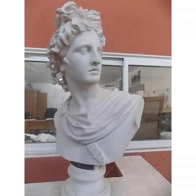 Apolon Du Belvédère