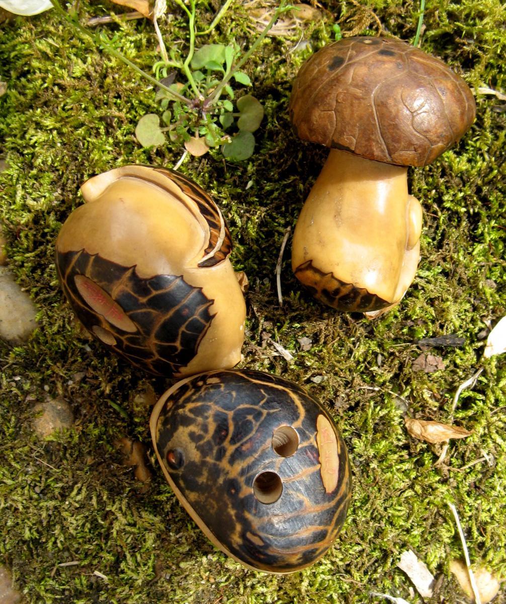 Three Netsukes Sculptes In Corozo Mushrooms, Fruit