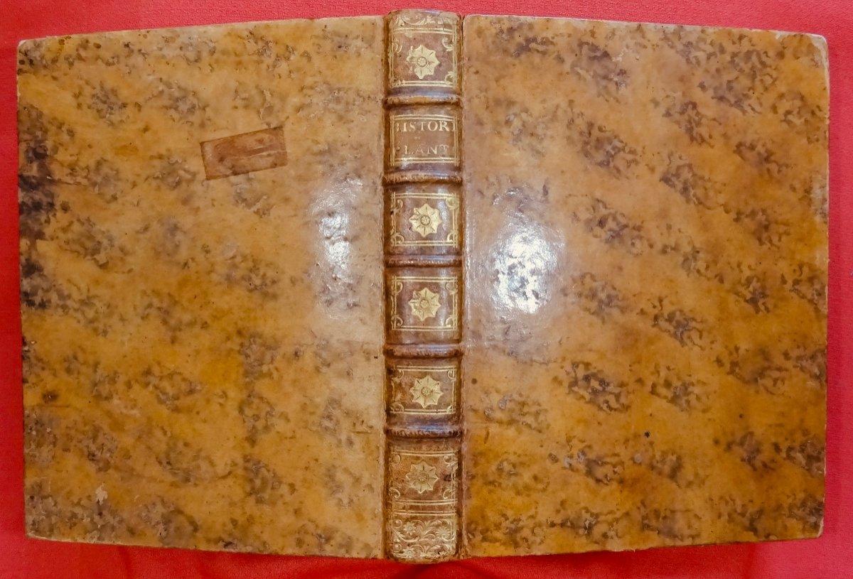 Livre En Latin De 1742. Rare Ouvrage En Latin Recensant Les Plantes d'Alsace. 7 Planches.-photo-7