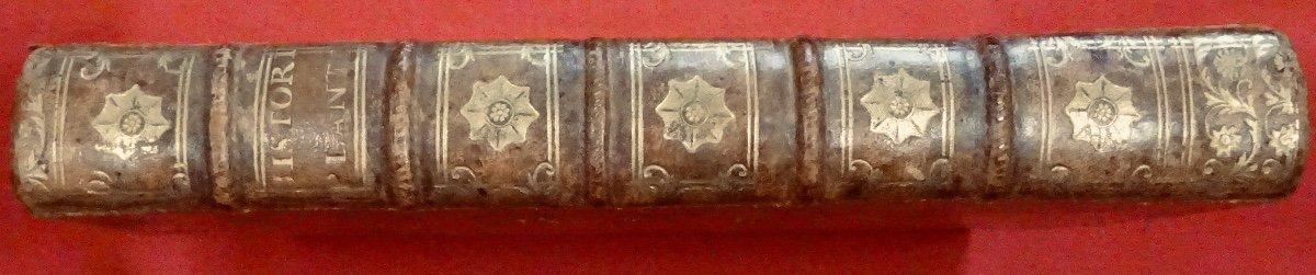 Livre En Latin De 1742. Rare Ouvrage En Latin Recensant Les Plantes d'Alsace. 7 Planches.-photo-8