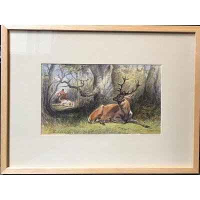 The Hunter And The Deer - Signed