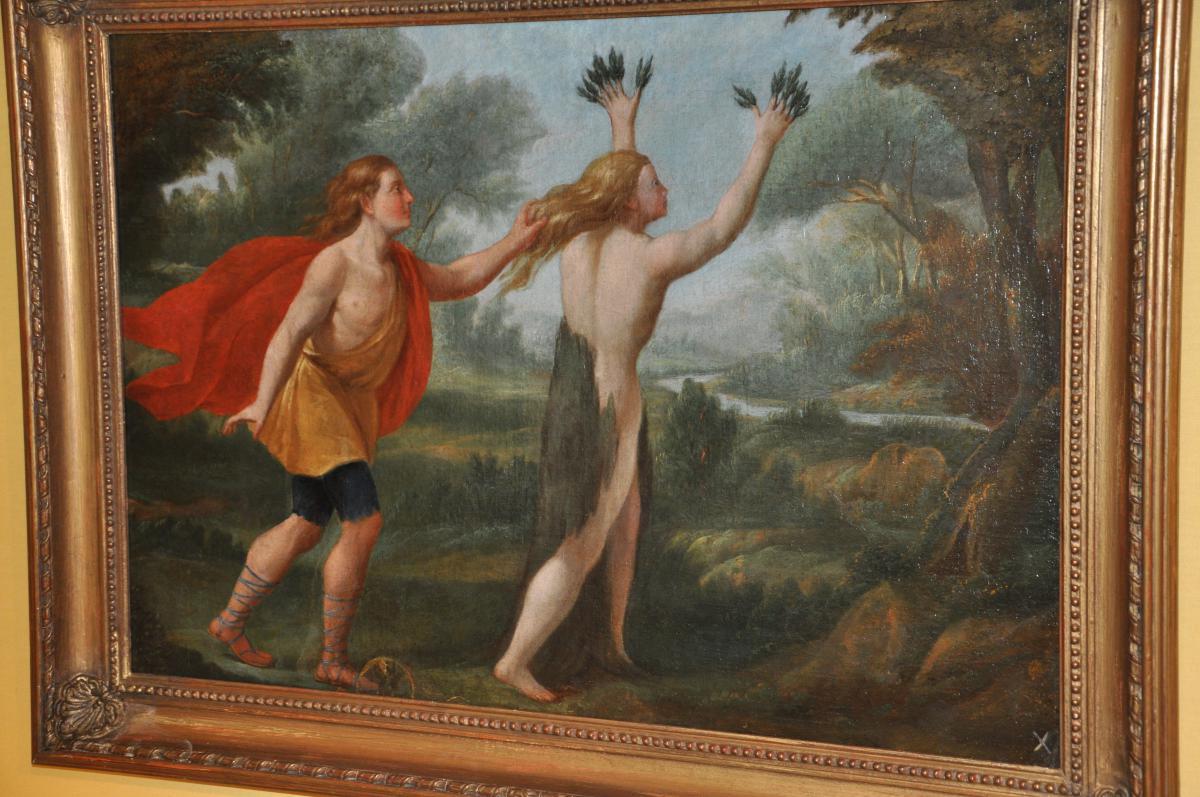 Apollon Et Daphné Huile Sur Toile De La Fin Du XVIIème Siècle d'Après Les Métamorphoses d'Ovide