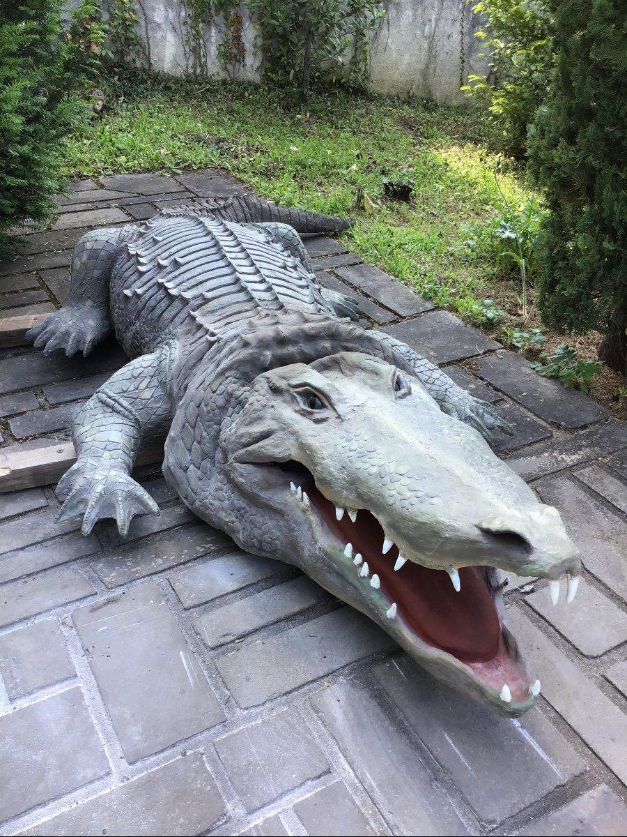 Crocodile Automate