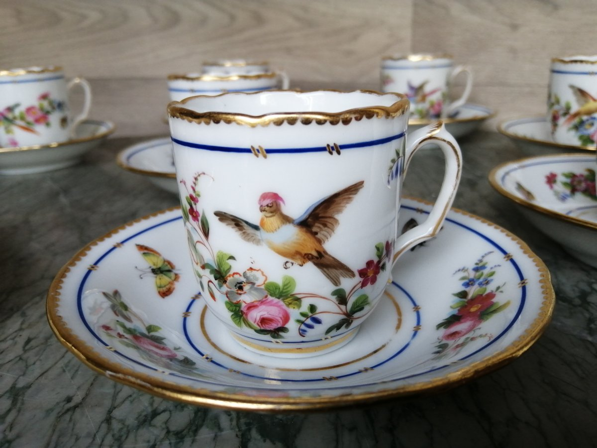Service Tasse A Café Porcelaine Décor De Perroquets Et Papillons (sèvres Paris )