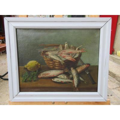 Naure Morte Panier De Sardines Hst XIXème