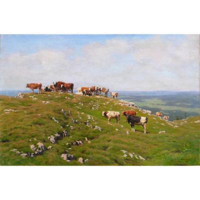 '' Cows Grazing In Pasture '' Albert Lugardon (1827-1909)