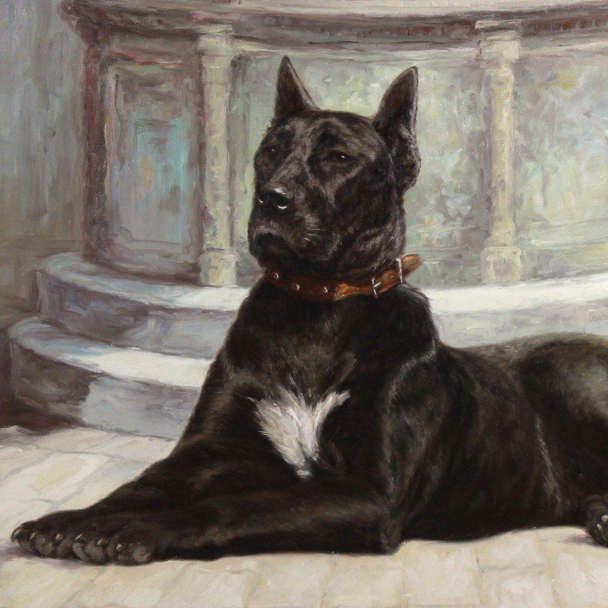 Portrait huile sur toile de chien -photo-2