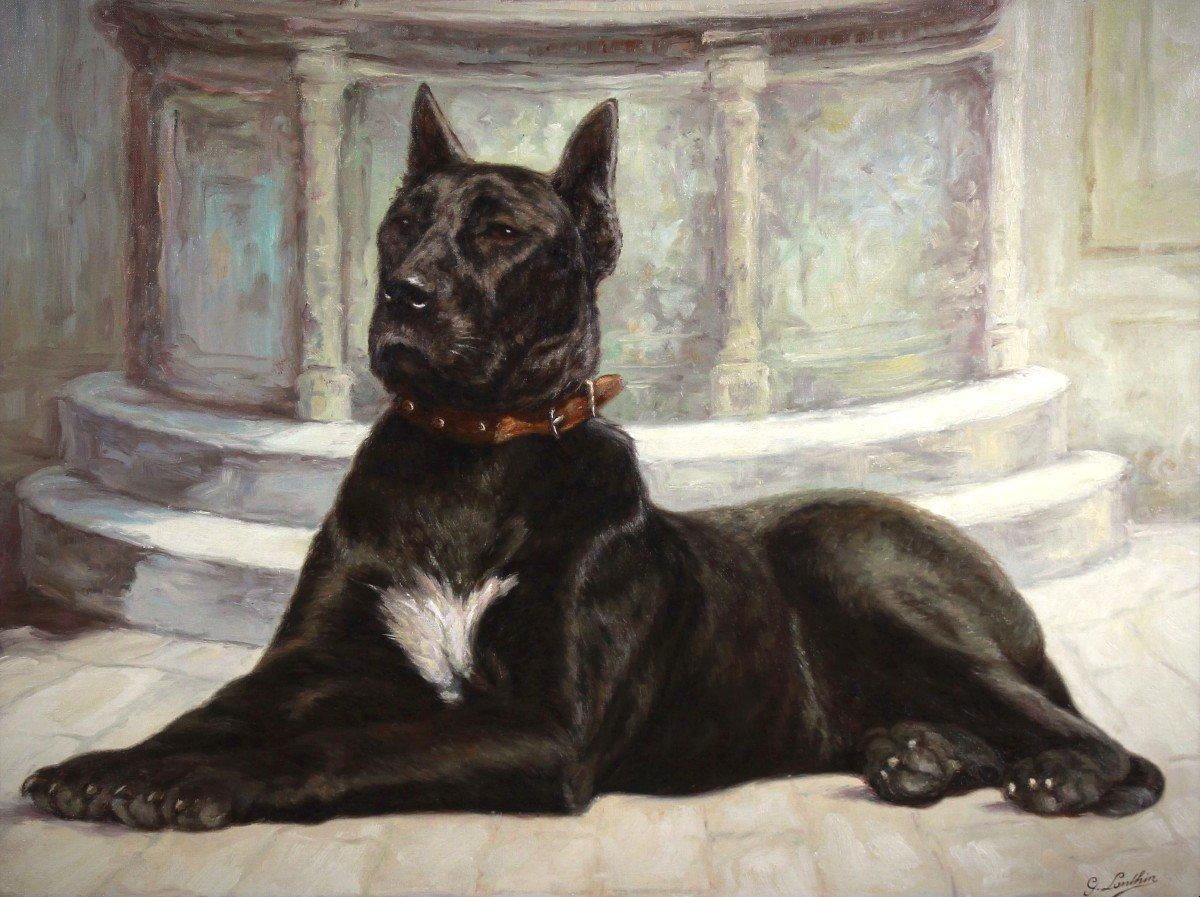 Portrait huile sur toile de chien -photo-3