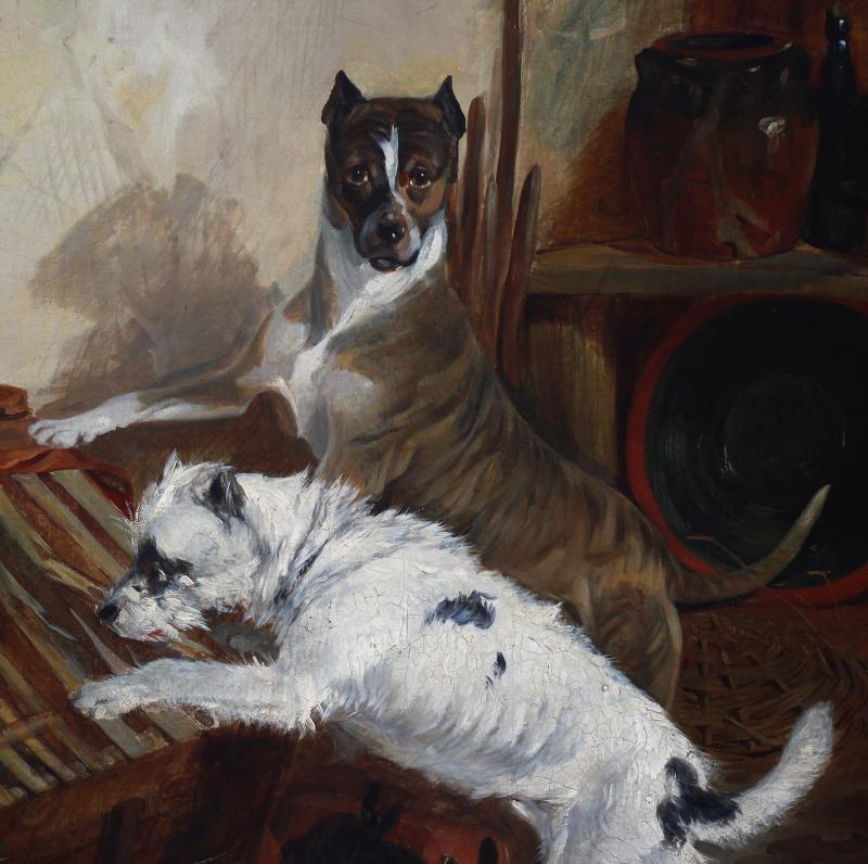 Tableaux Huile Sur Toile , Scene Avec Chiens Terrier Et Lapins Par Richard Ansdell-photo-3