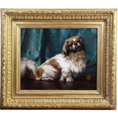 Oil On Canvas Portrait Of A Pekingese Dog 20th French School
