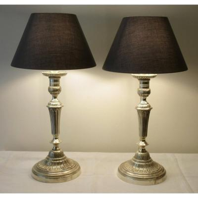 19th Century  Silver Bronze Pair Of Lamps