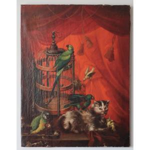 Tableau animalier, Le Chat Et La Cage Aux perroquet et autres Oiseaux .