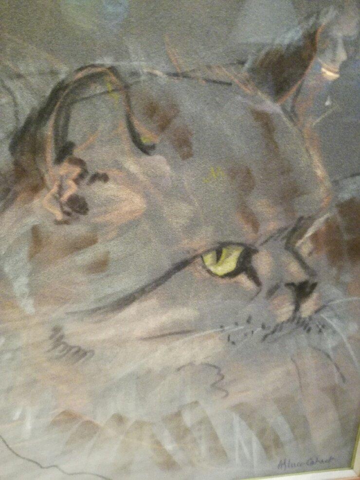 Cat's Head, Pastel.