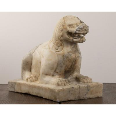 Pho Dog In Marble.