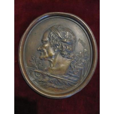 Voltaire. Grande Plaque En Bronze 18,5 X 17 Cm