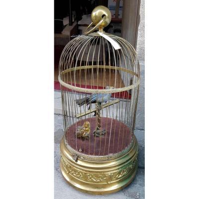 Automate, Cage à Oiseaux Siffleurs
