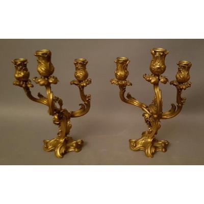 Paire De Candélabres De Style Louis XV En Bronze