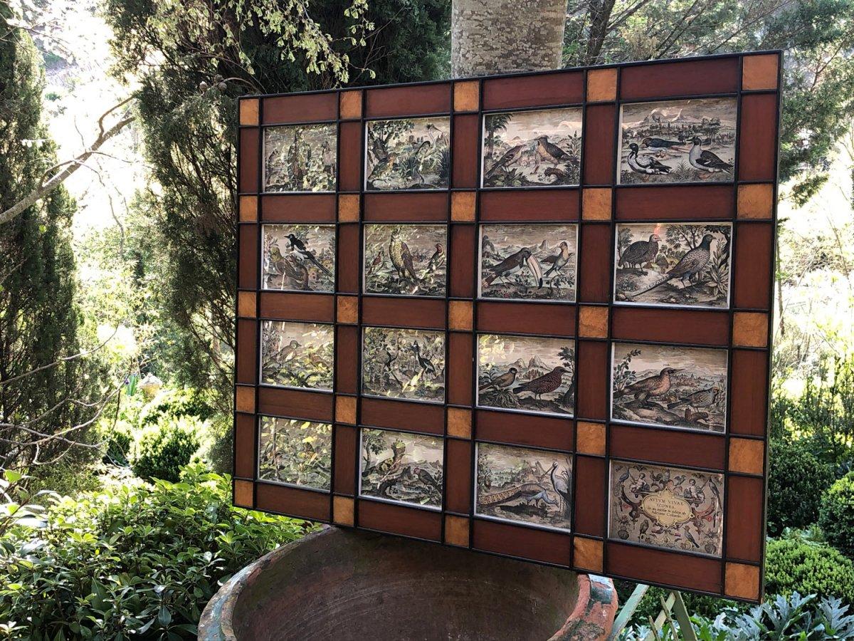 15 Gravures Et Page De Garde Du Traité D'ornithologie D'adriaan Collaert encadrées-photo-3
