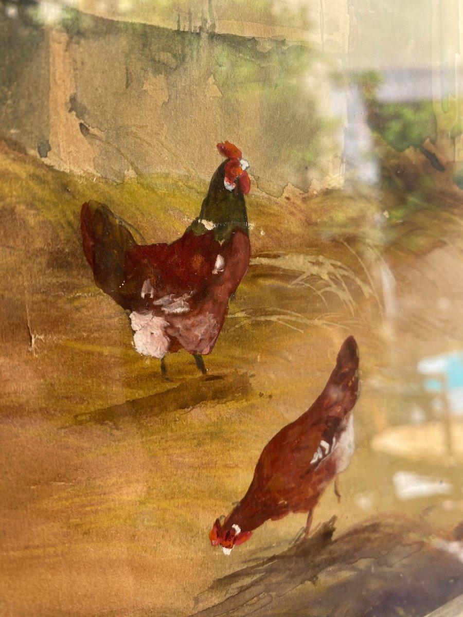 Belle aquarelle sur papier représentant une Cour De Ferme Animée De Volailles, coqs et poules Sur Papier, signée A. Sivan 19ème-photo-2