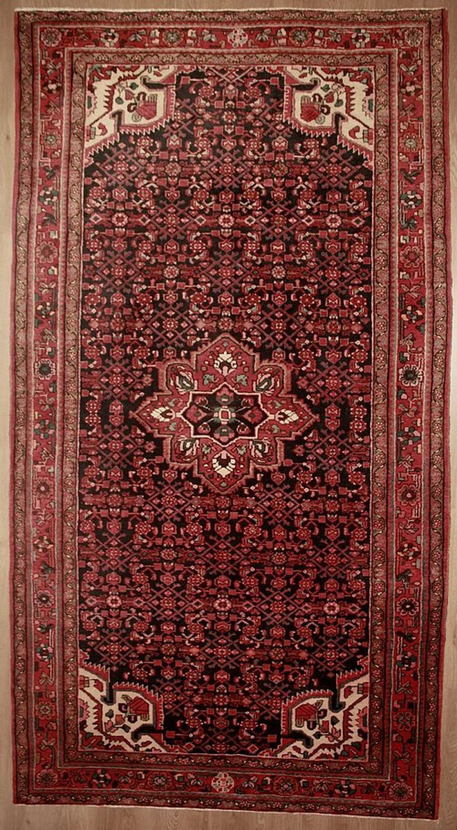 Tapis hosseinabad Iran 320 x 176 cm