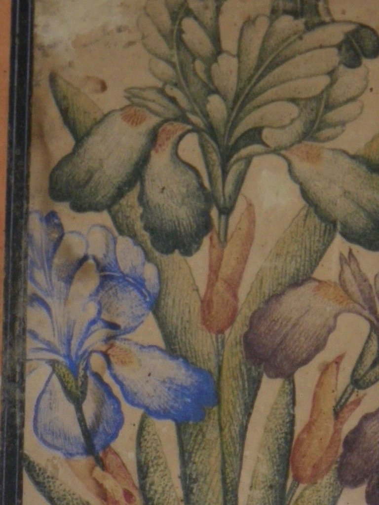 Gouache encadrée Indo-persane XVIIIe-XIXe-photo-4