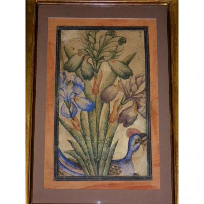 Framed Gouache Indo-persian 18th-19th