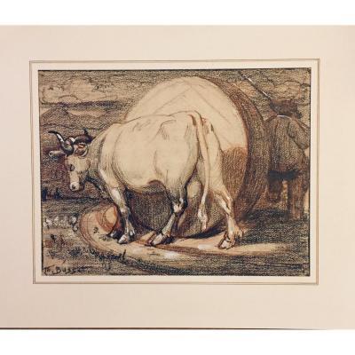 Dessin Maurice Busset : Vache Et Meule. Ecole De Murols