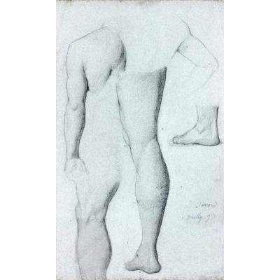 Antoine Gabriel Favard (1829 - ?): Studies Of Different Members Of The Human Body