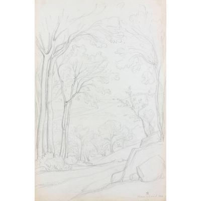 Théodore Caruelle D'aligny (1798 – 1871 ) - Une Route Bordée D'arbres à Yzeron