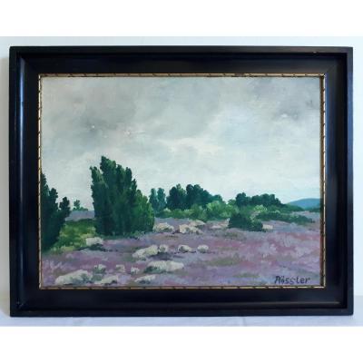 Tableau huile sur bois paysage RÖSSLER fin XIXème début XXème