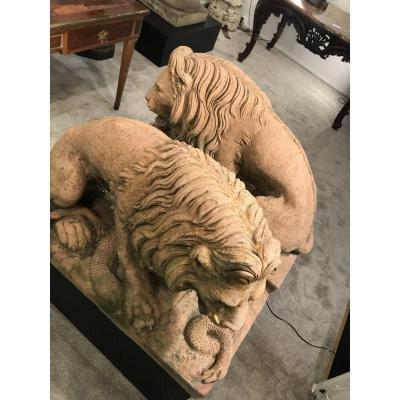 Lion  Facon Terre Cuite