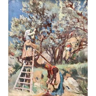 Louis Montagné (1879-1960)- La Cueillette Des Olives Près Des Angles-Avignon